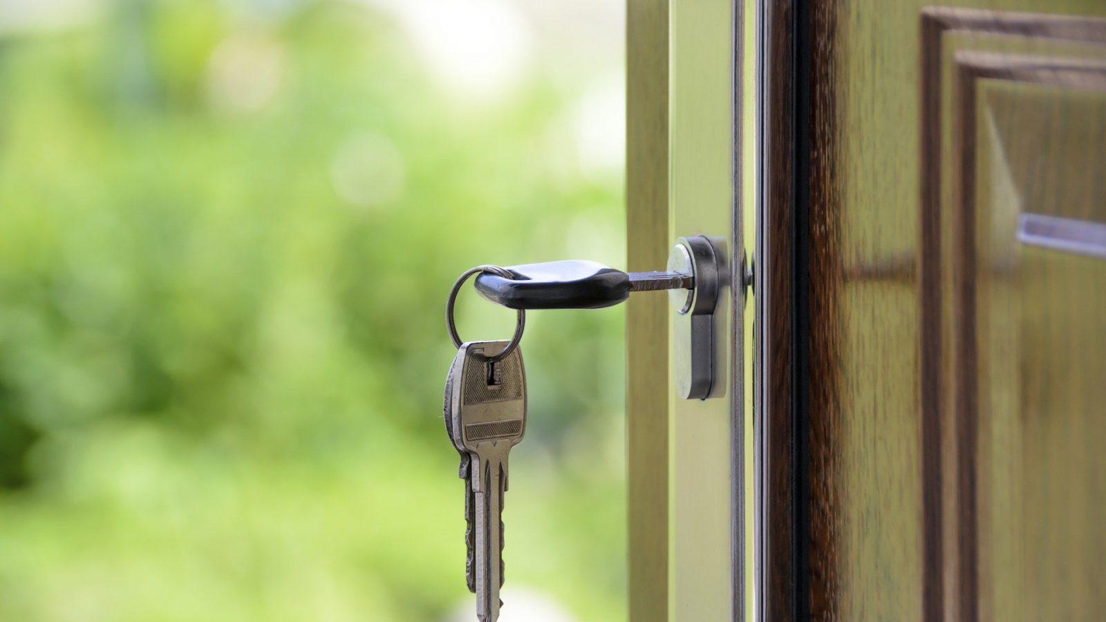 mangotree verzekeringen hypotheekadvies